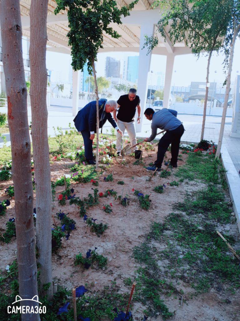 زراعة شجرة السّلَم